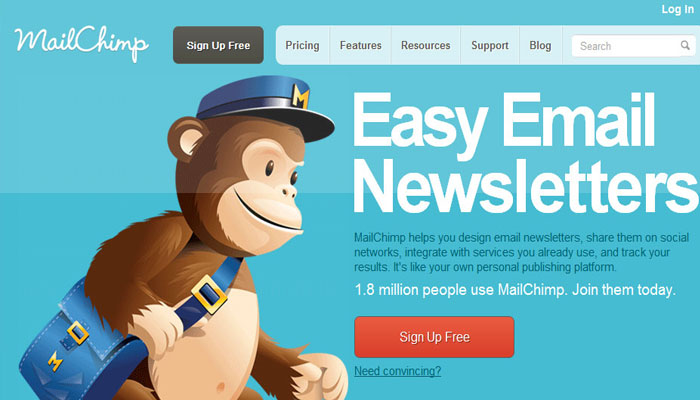 newsletter en WordPress